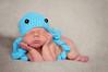 BUFFALOE ~ Newborn : To save images to your computer  - select an image - make it size ORIGINAL - right click and save to your computer - your may order images through propicsexpress.com OR mpix.com - do not color correct - OR YOU CAN SIMPLY CLICK BUY AND ORDER THROUGH SMUGMUG!!!